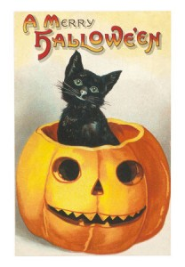 "Black cat in a pumpkin ""A Merry Halloween"" vintage card picture"